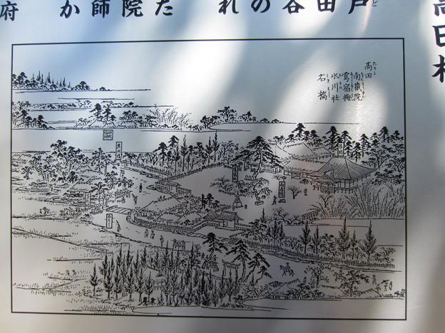 南蔵院(豊島区高田)