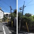 Photos: 宿坂(豊島区高田)南蔵院