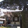 Photos: 12.04.04.法明寺 塔頭(豊島区)平等山観静院