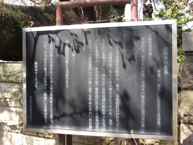 12.04.04.法明寺墓所(豊島区)