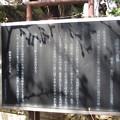Photos: 12.04.04.法明寺墓所(豊島区)