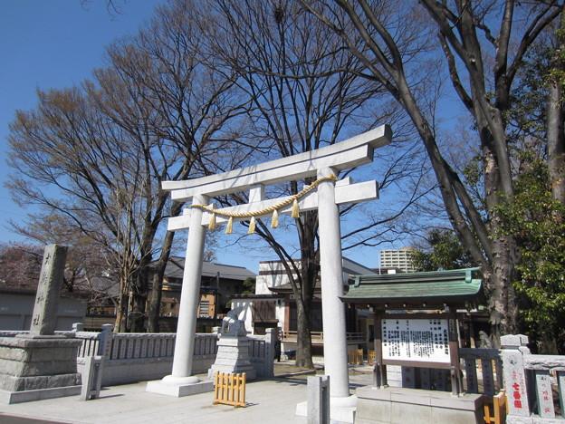 12.04.04.大鳥神社 (豊島区雑司が谷)
