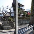 Photos: 白鳥稲荷大明神(南池袋)御嶽坂 ・清立院