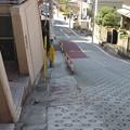 Photos: 豊島区高田2丁目