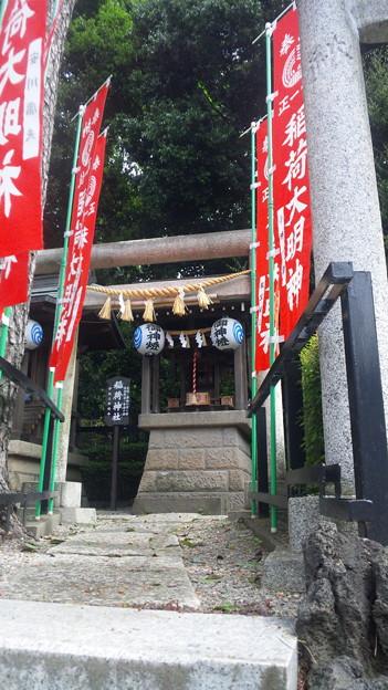 沼袋氷川神社(中野区)稲荷社
