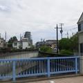 江古田公園(中野区松が丘)大北橋より北