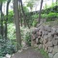 Photos: 江古田公園(中野区松が丘)