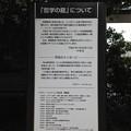 Photos: 13.04.02.哲学堂公園(中野区)哲学の庭