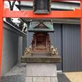 Photos: 13.04.02.新井薬師(中野区新井)豊川稲荷