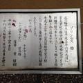Photos: 13.04.02.新井薬師(中野区新井)