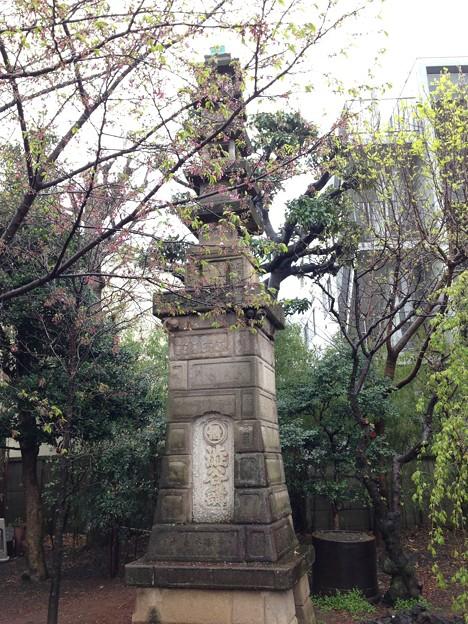 13.04.02.新井薬師(中野区新井)