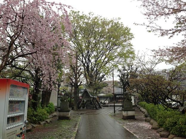 13.04.02.北野神社(新井天神。中野区新井)