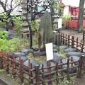 Photos: 北野神社(新井天神。中野区新井)