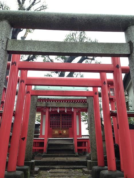 Photos: 北野神社(新井天神。中野区新井)伏見稲荷大明神