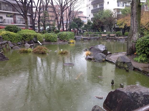新井薬師公園(中野区新井)
