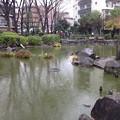 Photos: 新井薬師公園(中野区新井)