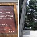 Photos: 旧古河庭園(東京都北区)