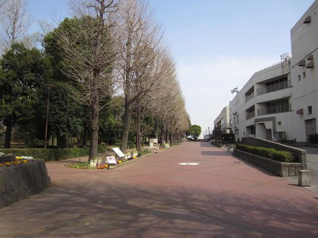 御殿前遺跡/滝野川公園(東京都北区)