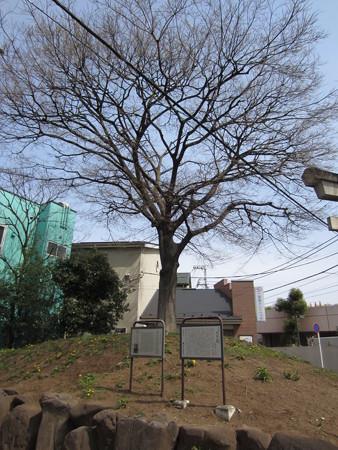西ケ原一里塚跡(東京都北区)
