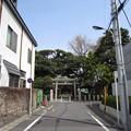 七社神社(東京都北区)参道