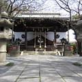 七社神社(東京都北区)拝殿