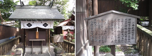 Photos: 七社神社(東京都北区)神明宮