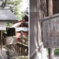 七社神社(東京都北区)神明宮