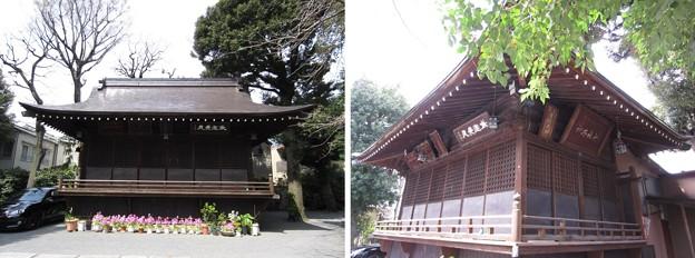 七社神社(東京都北区)神楽殿