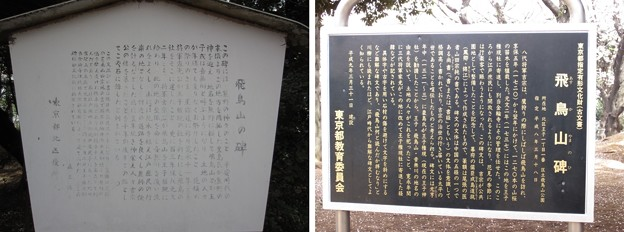 12.04.10.旧渋沢庭園/飛鳥山公園(東京都北区)飛鳥山碑