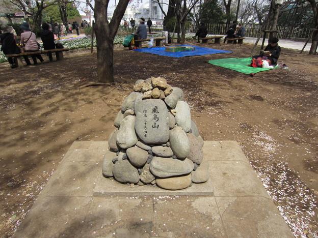 12.04.10.旧渋沢庭園/飛鳥山公園(東京都北区)山頂