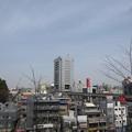 12.04.10.旧渋沢庭園/飛鳥山公園(東京都北区)北とぴあ