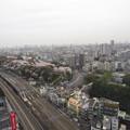 Photos: 12.04.10.北とぴあ展望室より(東京都北区)飛鳥山と