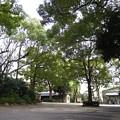 12.04.10.王子神社(東京都北区)