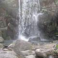 Photos: 12.04.10.名主の滝公園(東京都北区)男滝