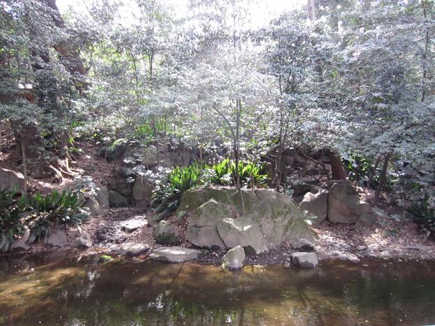 12.04.10.名主の滝公園(東京都北区)