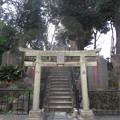 Photos: 12.04.10.十条冨士神社 ・十条富士塚(北区中十条)