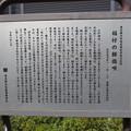 Photos: 12.04.10.稲付村 ・普門院(北区西赤羽)稲付の餅搗唄