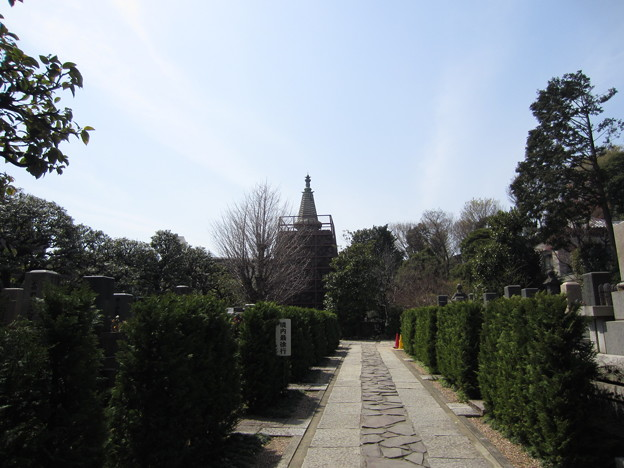 稲付村 ・普門院(北区西赤羽)