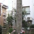 11.01.31.寿徳寺境外墓地 近藤勇と新選組供養塔(東京都北区)
