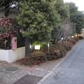 Photos: 11.01.31.板橋宿 平尾脇本陣・豊田家屋敷跡(板橋区板橋)