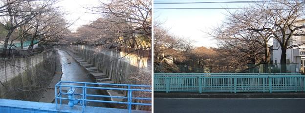 Photos: 11.01.31.加賀藩下屋敷跡縄張(板橋区加賀)王子新道 金沢橋