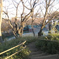 11.01.31.加賀藩下屋敷跡内 築山跡(板橋区加賀)加賀公園