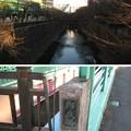 御成橋(板橋区加賀)加賀藩邸方向
