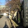 Photos: 11.01.31.南蔵院(板橋区蓮沼町)