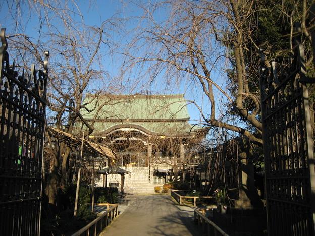 Photos: 南蔵院(板橋区蓮沼町)