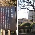 Photos: 志村一里塚(板橋区志村)