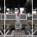 Photos: 東高野山 妙楽院 長命寺 (練馬区高野台)十三佛
