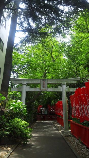 武蔵野稲荷神社(練馬区栄町)東鳥居