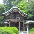 Photos: 武蔵野稲荷神社(練馬区栄町)月日十天上大神 拝殿
