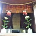Photos: 武蔵野稲荷神社(練馬区栄町)